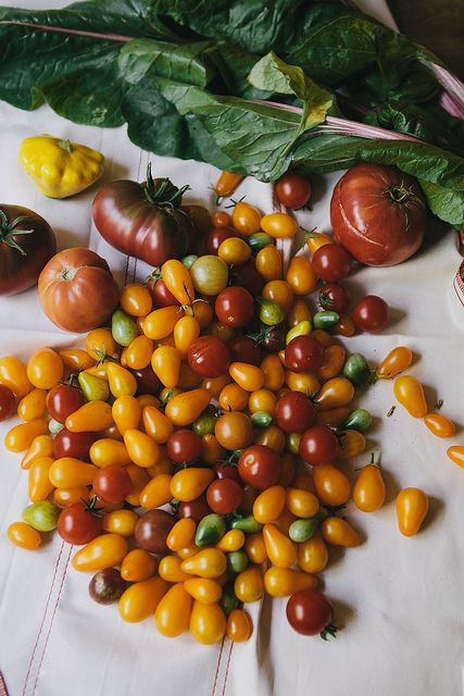 by julie marie craig, via Flickr the end of tomato season.....