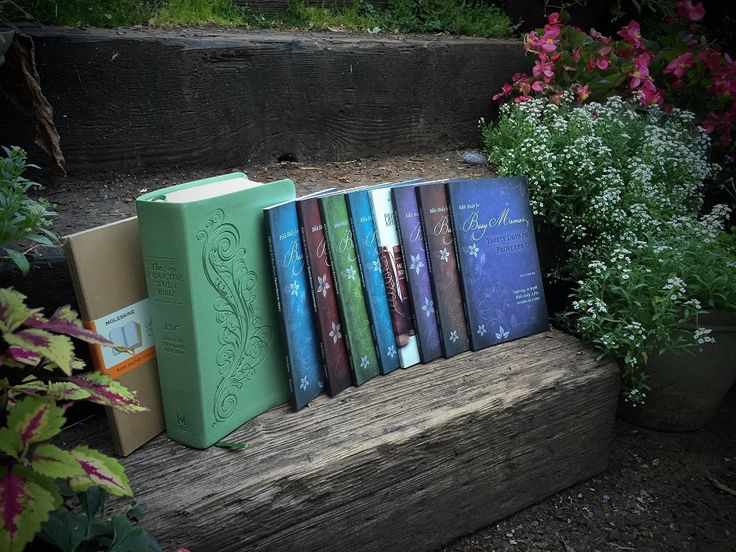 """Bible Study Giveaway from Doorpost - 8  """"Busy Mama's"""" Bible Study books, 3 Moleskine journals, New Inductive Study Bible (ESV or NKJV). -"""
