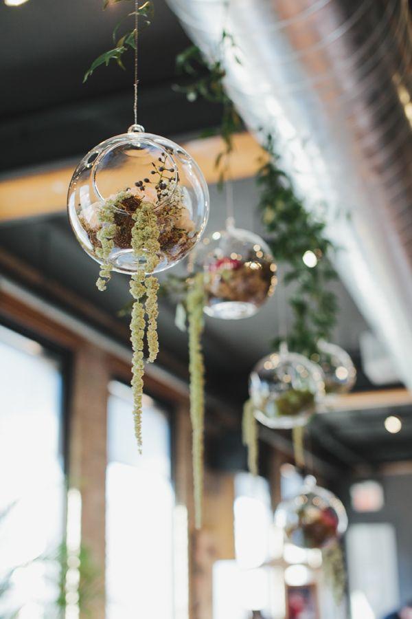 325 best terrariums plants images on pinterest - Terrarium decoration miniature ...
