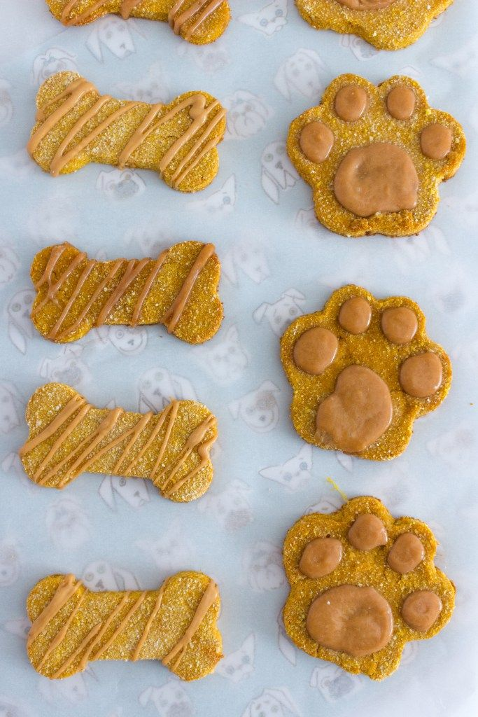 Homemade Grain Free Dog Treats Recipe Dog Biscuit Recipes