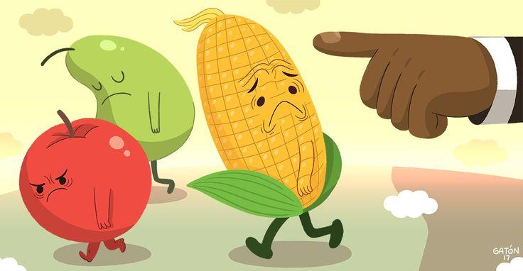 Han reducido el uso de pesticidas en un 37% y aumentado la productividad en un 22%.