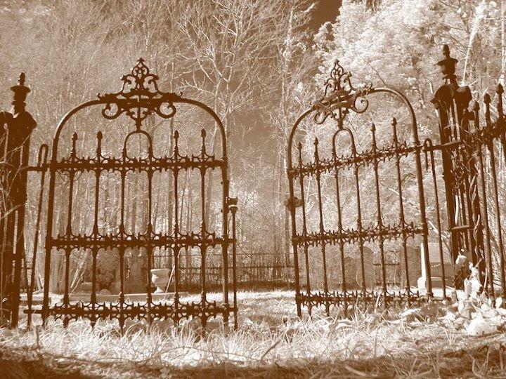 Double spooky gate wonderland pinterest gates