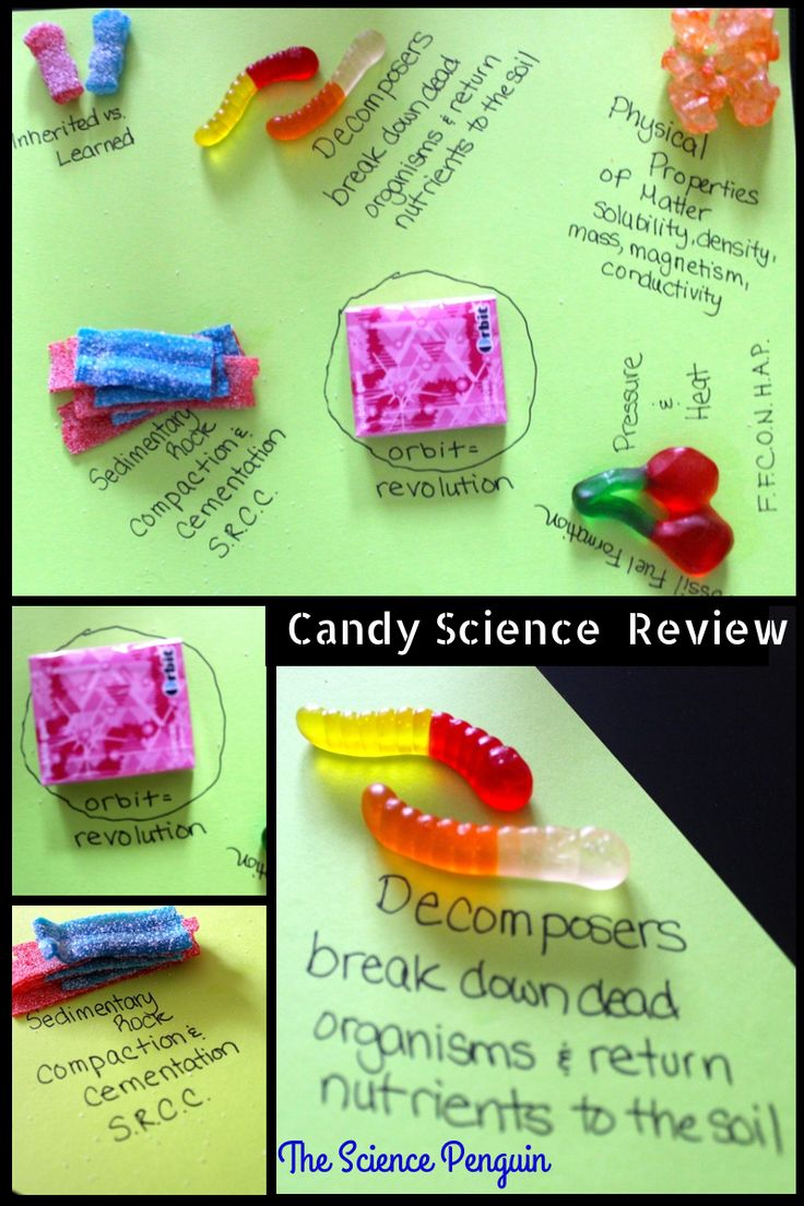 Candy Science Test Prep Review