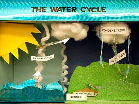 Water Cycle Diorama