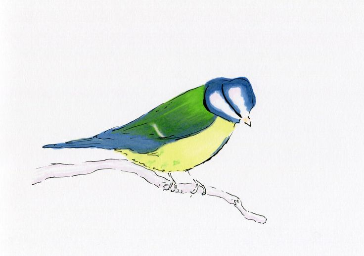 Birds of a feather II – Pen drawing Flexmarkers and