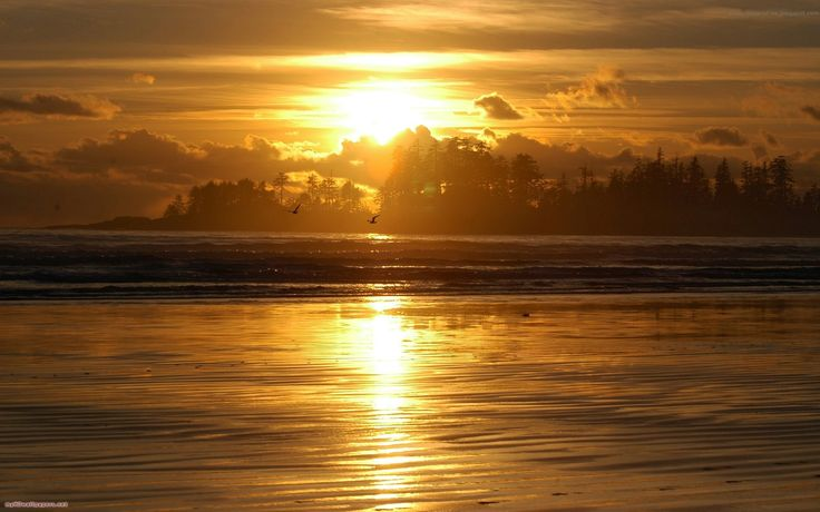 pin golden sunset hd - photo #7