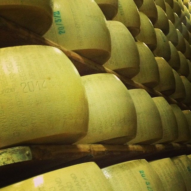 Parmigiano Reggiano in the making at Hombre cheese farm - Instagram by norskereiseblogger