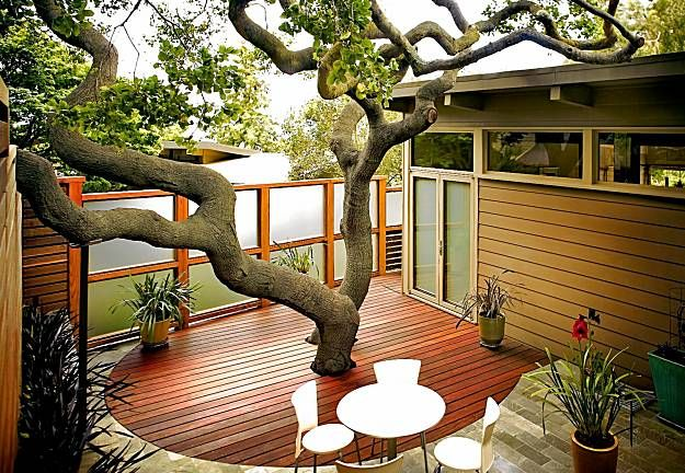 amazing courtyardGardens Decor, Balconies Gardens, Decks, Gardens Design Ideas, Trees, Small Gardens, Patios, Interiors Gardens, Private Gardens