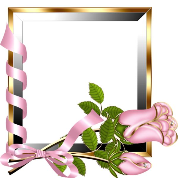 Gold and Silver Transparent Frame with Light Pink Roses