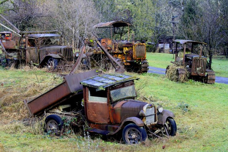 Serendipity and Orchids: Derelict Machinery