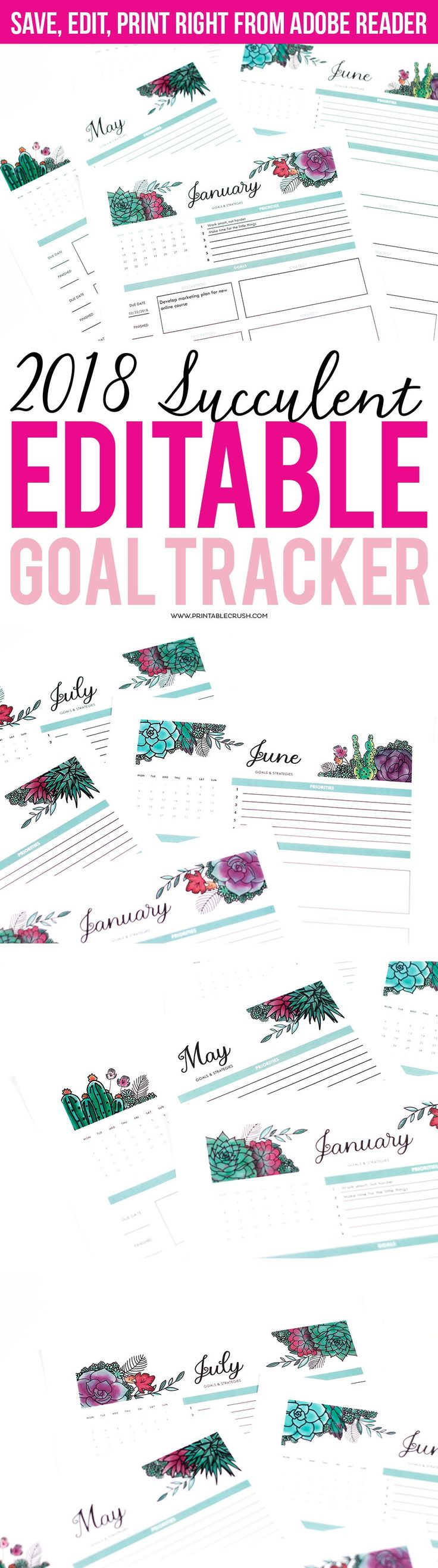 Succulents Editable 2018 Goal Tracker Printable. This is THE MOST functional Goal Tracker Printable-Use it to prioritize your goals and come up with strategies to implement them.