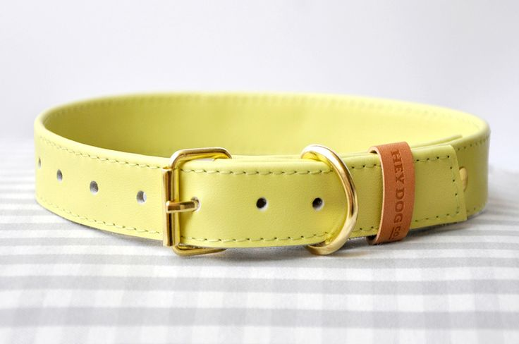 Hey Dog Canary Bon Bon collar