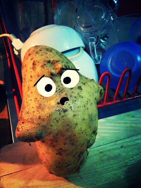 Who is killing a #potato?...#cartoon #photography