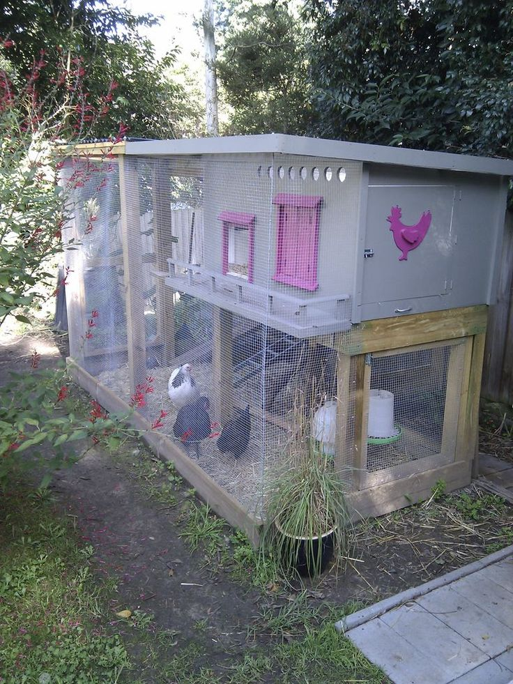 Chicken coop cage run diy and crafts and chicken for Chicken run plans