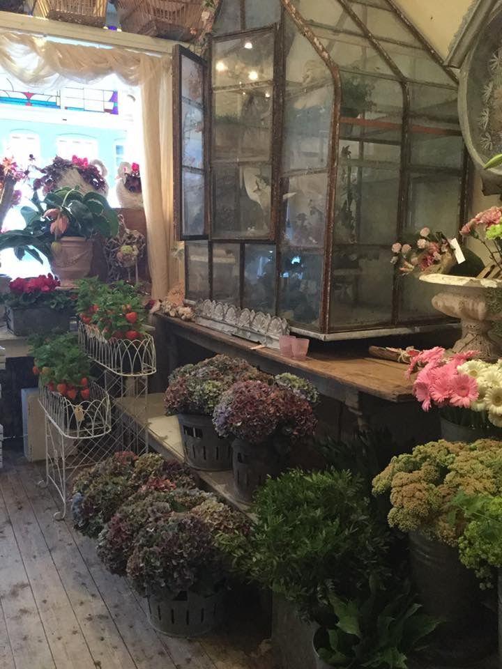 My Secret Garden, Glass Terrarium, Vintage Market, Flower Shops, Container  Garden, Window Boxes, Terraria, Floral Shops, Florists