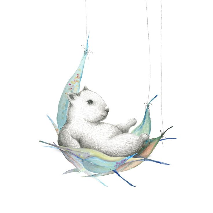 Wombat, Possum and Koala! - Part of the 'Australiana' series. They look fabulous on their own or as a set. The illustrations are hand-paint...