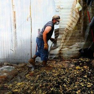 Junk clean up : Trash removal services by Jacks junk removal in South Florida..... | jacksjunkremoval