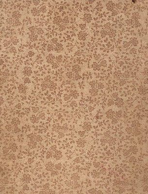 Victorian Floral Paper - Great Background - The Graphics Fairy