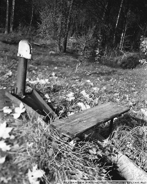Колонка. Linhof Technika iii 4x5, Rodenstok 150mm. Пленка: Ilford Delta 100.