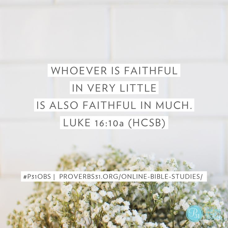 34 best proverbs 31 ministries bible study becoming more