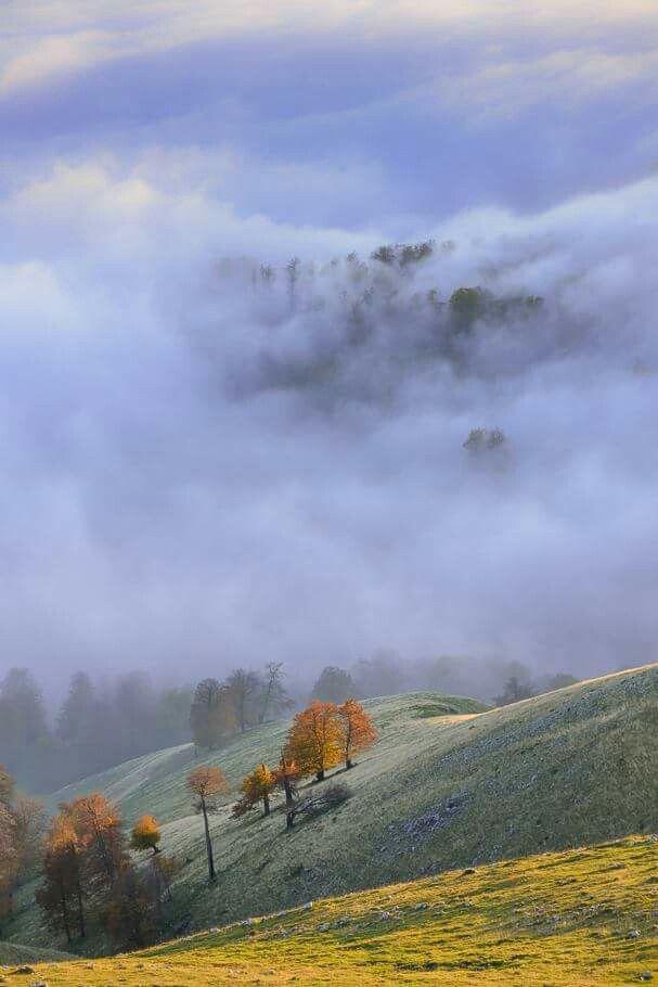 Autumnal echoes