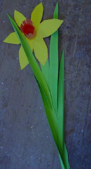 Narcis voor op het raam.  http://www.adlj.nl/laed/wp-content/uploads/2009/12/NarcisPapierRuimtelijk.pdf Werkblad op deze website.