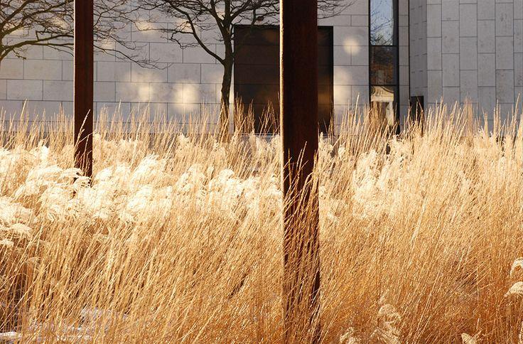Plaza at BRFkredit Head Quarters by Henrik Jørgensen Landskab AS « Landscape Architecture Works | Landezine urban meadow grass