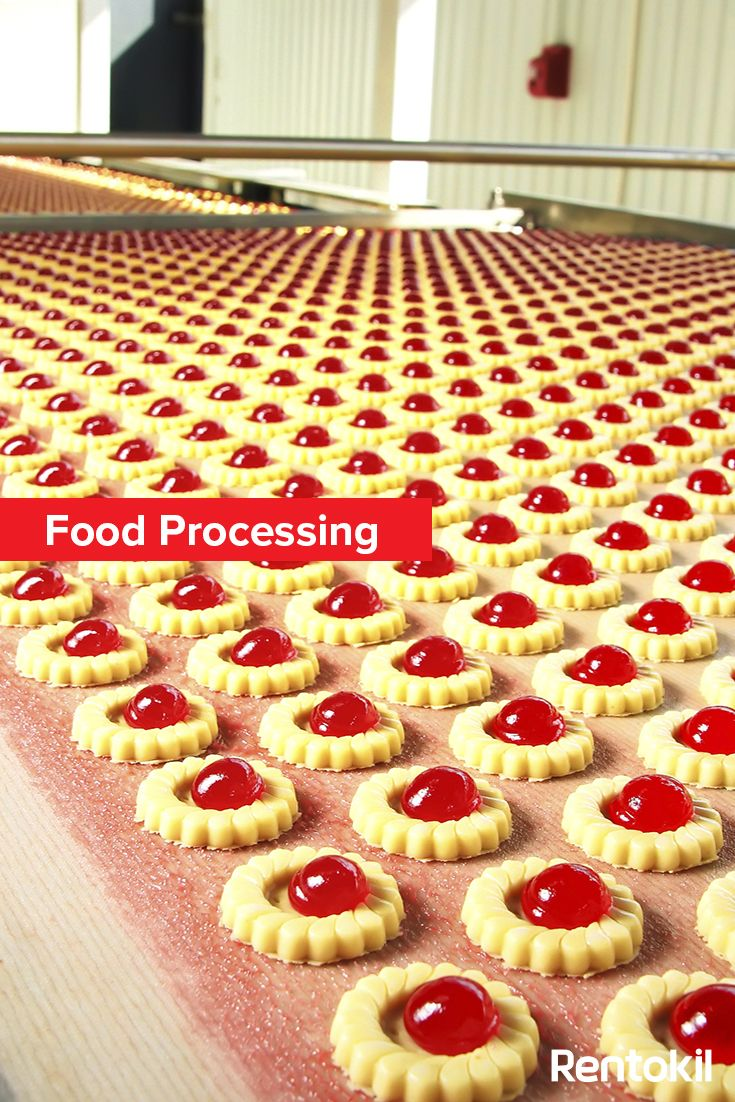 ideas about food safety standards elizabeth gain insights into the world of food processing and how pest control can help adhered to