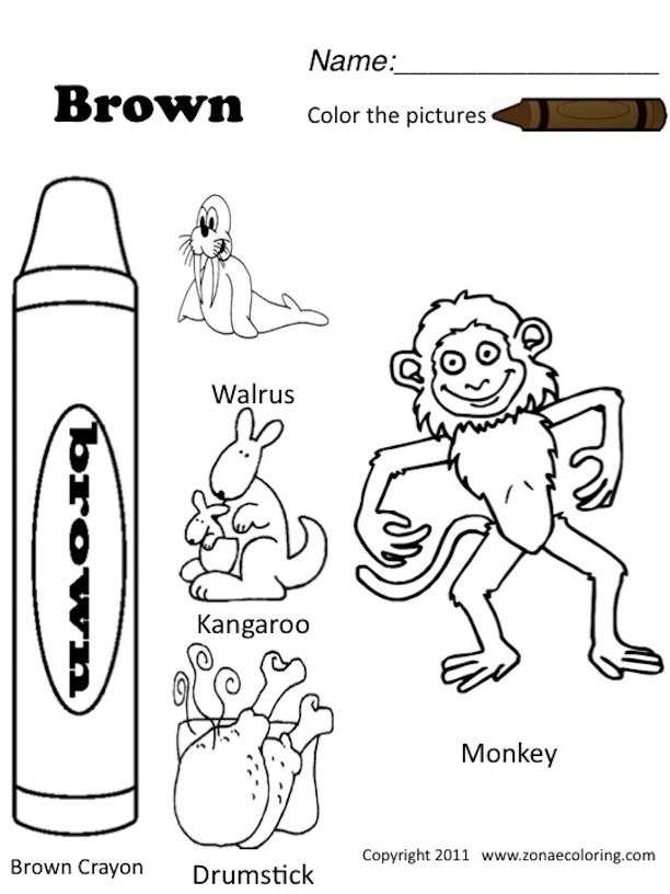 Brown Coloring Pages Preschool. Color Brown Worksheets Sketch Coloring Page 34 best Preschool Printables  images on Pinterest