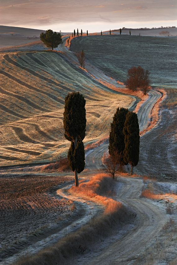 on the road.val D'orcia Siena Tuscany