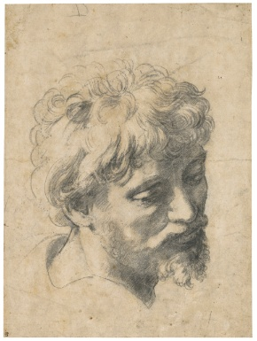 Raffaello Sanzio, called Raphael  URBINO 1483 - 1520 ROME  HEAD OF A YOUNG APOSTLE  Estimate: 10,000,000 - 15,000,000 GBP  Black chalk over pounced, dotted outlines  375 by 278 mm