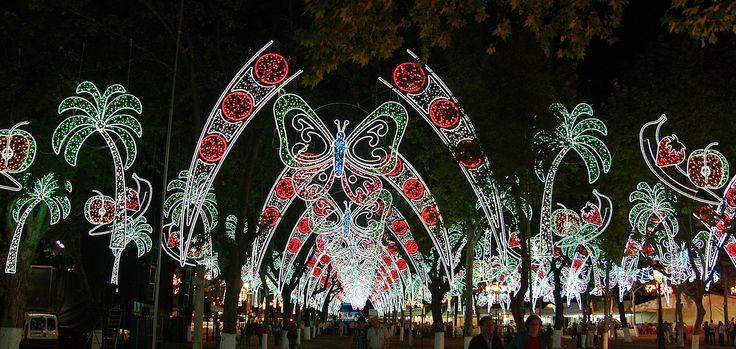 Alumbrado de fiestas con centro de Mariposas  www.electromiño.es  #electromiño #CiudadesNavidad #luz #colores #mariposa #leds #led #alumbrado #alumbradofiestas #flores #laterales #lucesdecolores #petalos