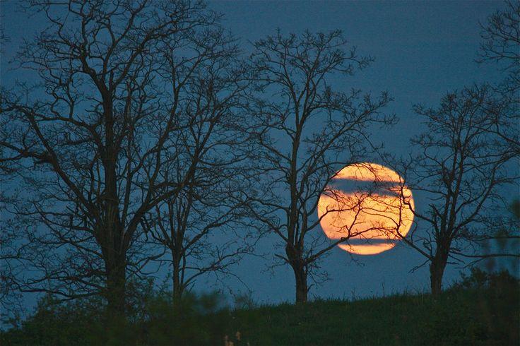 Cinco de Mayo Moon 5.5.2012