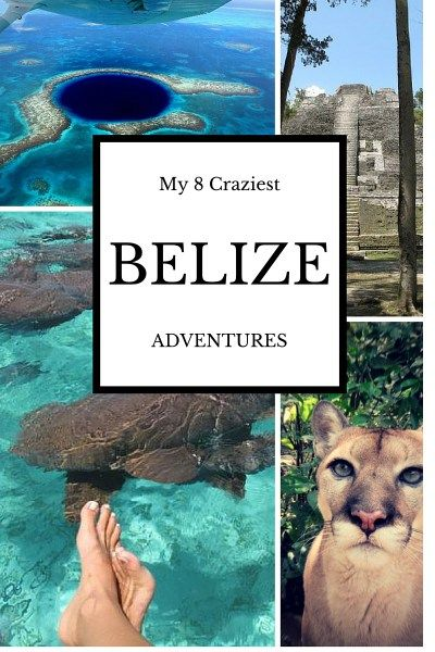 My Eight Craziest Adventures in Belize plus one.  Skydiving, rappelling, diving the Blue Hole, caving. wild animals and more