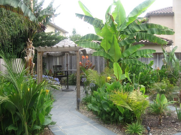 My Brillian Design: Front lawn landscaping ideas ... on Tropical Backyards  id=36534