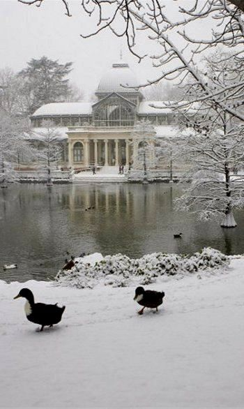 Crystal Palace in the Snow, Retiro Park, Madrid, Spain (by Marco Cristofori)