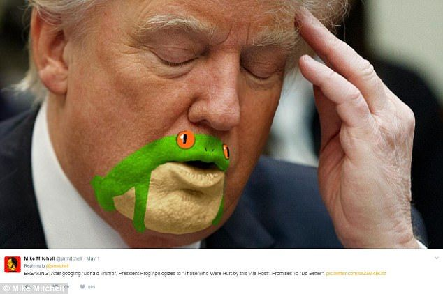 The saga unfolds: Mitchell's hilarious images are accompanied by a fictional saga in which the frog actually becomes 'President Frog' and runs the country in lieu of Trump