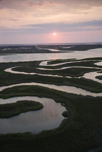 Marshland on Bald Head Island, North Carolina