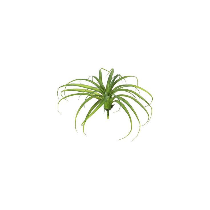 Artificial Plastic Grass 3/Bag Frosted Green - Vickerman