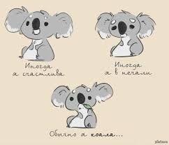 Картинки по запросу коала в рисунках
