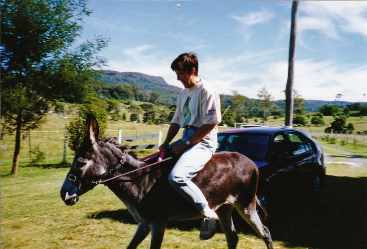 """Beautiful """"Dolly"""" (the donkey not the rider!)  Rescued her from a slaughterhouse. We had 10 loving years together before ovarian cancer took her life. A beautiful soul, like every donkey I have ever met! If you can. Donate to a donkey rescue organisation!"""