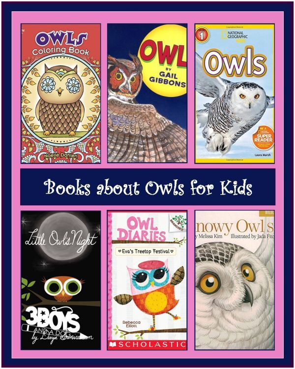 Since I made a cute Owl Valentine Card, it got me thinking about what kinds of gifts could be given with them. In addition to the normal candy, you could give kids books! Or you could just get these Books about Owls, for Kids for your child to create an entire theme unit around Owls. Make the […]