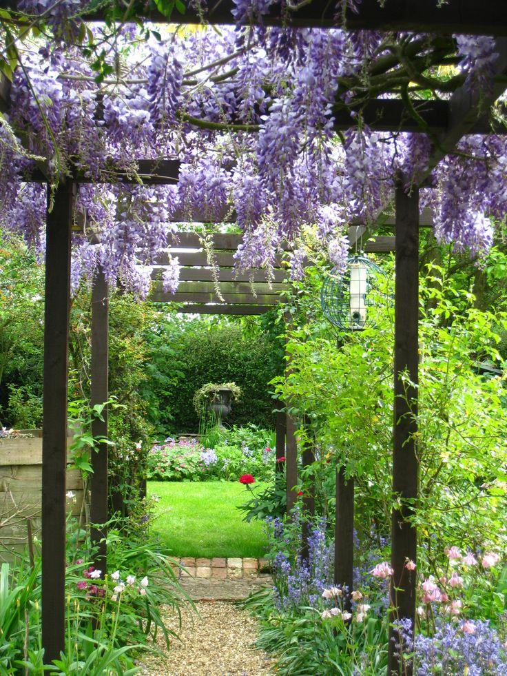 Secret Garden: The 25+ Best Wisteria Pergola Ideas On Pinterest