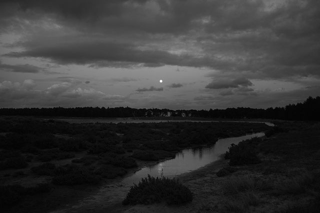 Moonrise, Holkham, Norfolk.