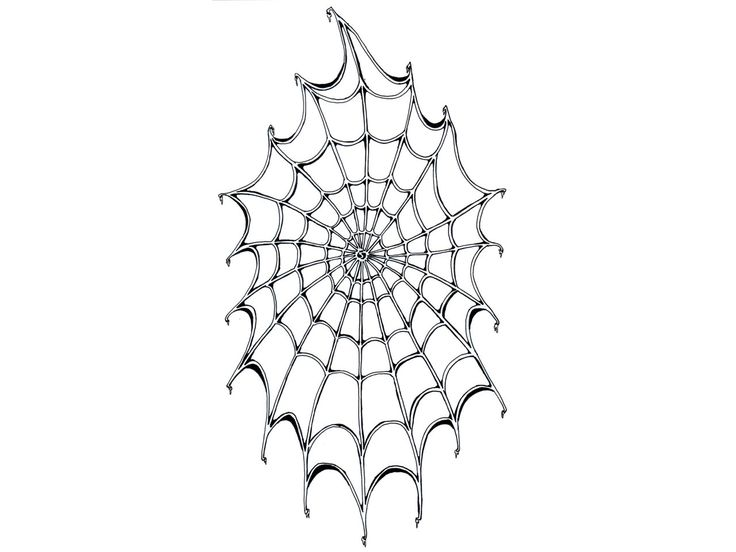 17 best images about spider web tattoos on pinterest spider webs halloween costumes and spider. Black Bedroom Furniture Sets. Home Design Ideas