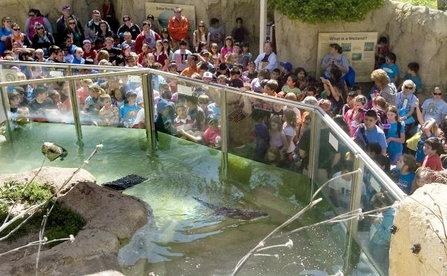 Earth Day at Lee Richardson Zoo, Garden City, KS Garden