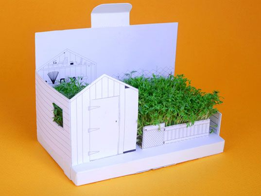 gardencard: Green Home, Postcards, Tiny Gardens, Business Cards, Minis Gardens, Greeting Cards, Zen Gardens, Products Design, Backyard Gardens