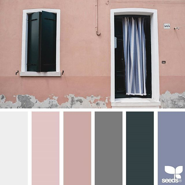 today's inspiration image for { color wander } is by @peoniesncream ... thank you, Beatriz, for another incredible #SeedsColor image share!