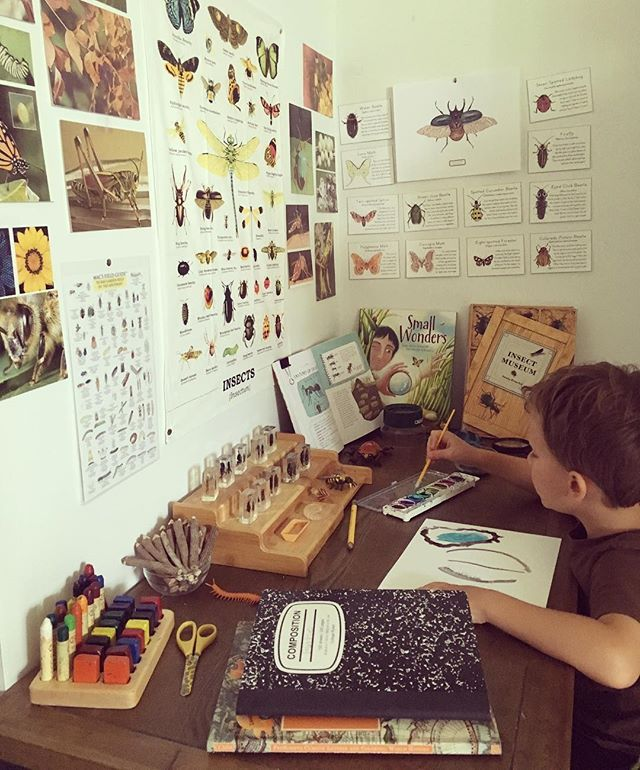 nature study desk nook w/ posters