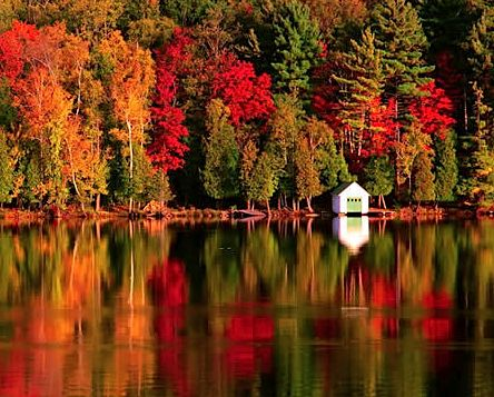 new england autumn.